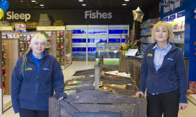 Petworld Tallaght Opens