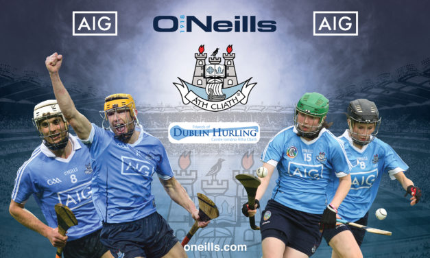 Friends of Dublin Hurling – supporting success