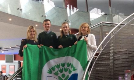 Firhouse School Receives First Green Flag