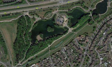 Update sought on Tallaght Wetlands