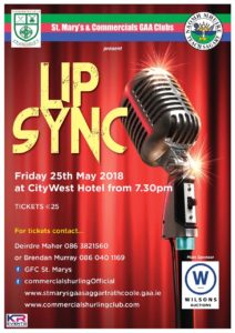 Lip Sync Saggart Rathcoole