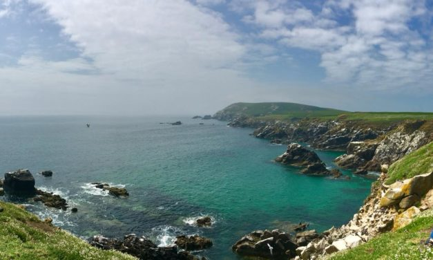 Saltee Islands with Palmerstown Camera Club