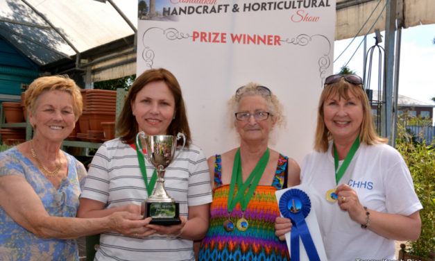 Clondalkin Handcraft and Horticultural Show 2018