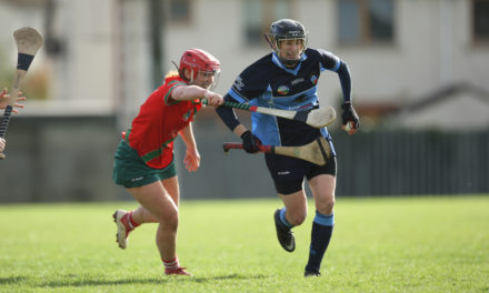 Dublin Camogie Adult Championship