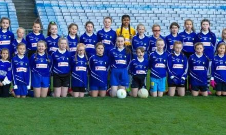 St Mary's National School GAA Team