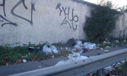 Tallaght Shines Brightly As Littered City Areas Fail To Improve In Litter Survey