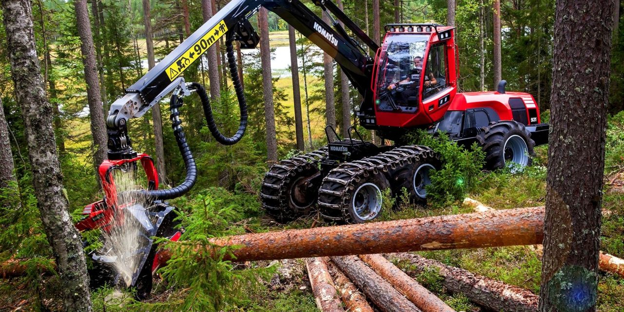 RATHCOOLE COMPANY PREDICTS CONTINUED GROWTH AND JOB CREATION IN FORESTRY AND TIMBER PROCESSING