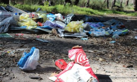 Acute levels of illegal dumping is tainting South Dublin landscape