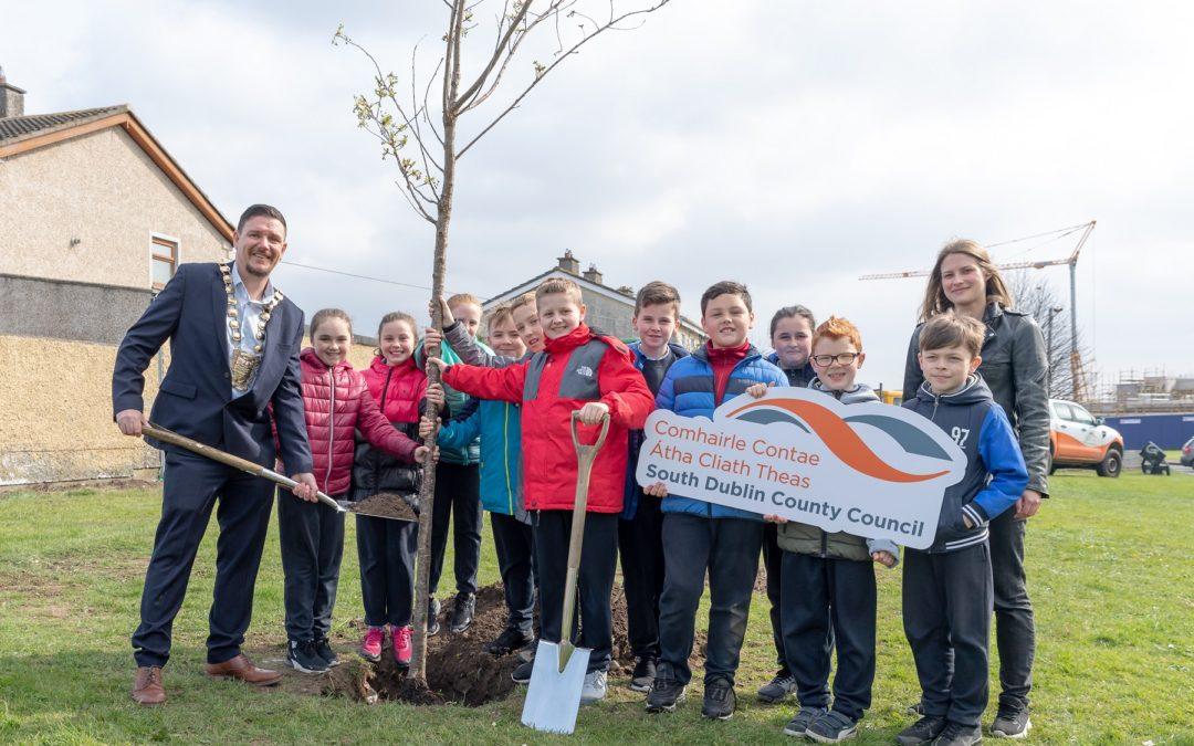 National Tree Week 2019