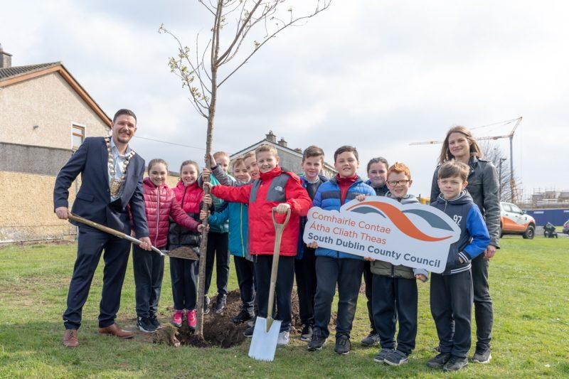 National Tree Week 2019 Clondalkin