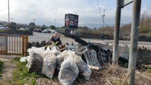 Dodder Valley Park Clean Up