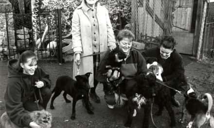 Getting Nostalgic With Newsgroup – Animal Aid Clondalkin 1995