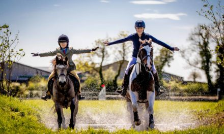 Tattersalls International Event And Country Fair