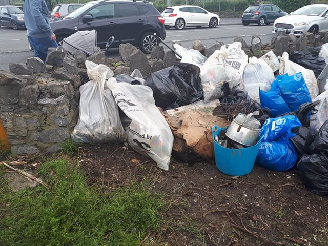 Dodder Valley Litter Mugs June 2019
