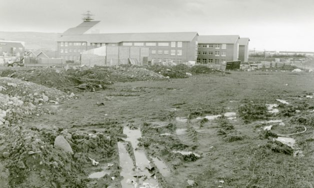 Getting Nostalgic with Newsgroup; South Dublin County Council Headquarters under construction