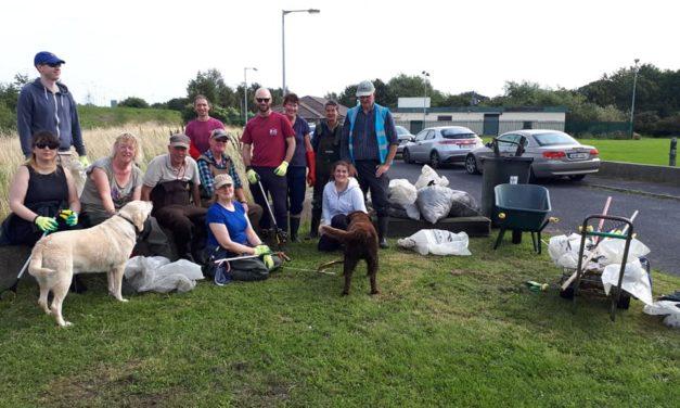 Dodder Valley Clean Up August 2019