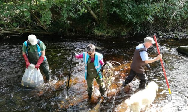 Dodder Clean Up September 2019