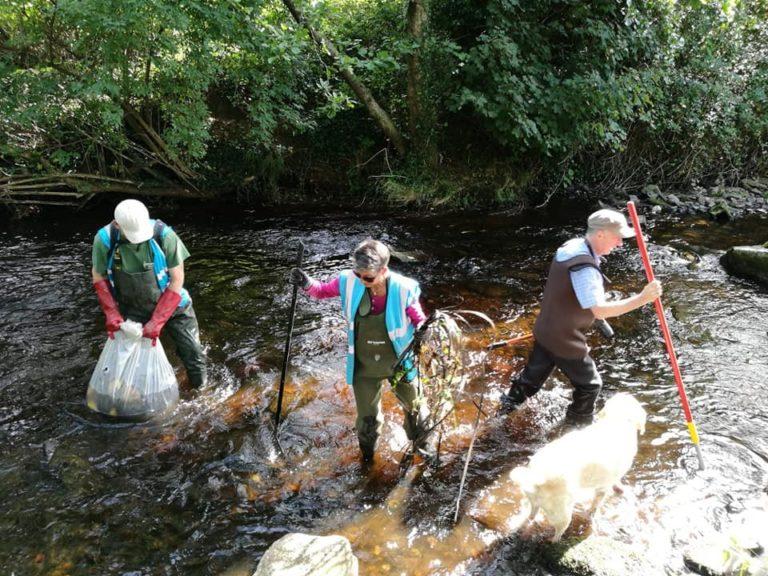 Dodder Clean Up 2019