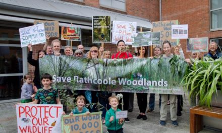 Save Four Districts Woodland Habitat