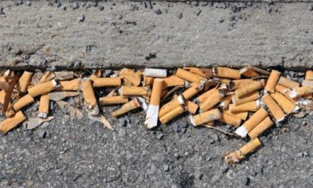 Time to consider compulsory litter warnings on cigarette packs