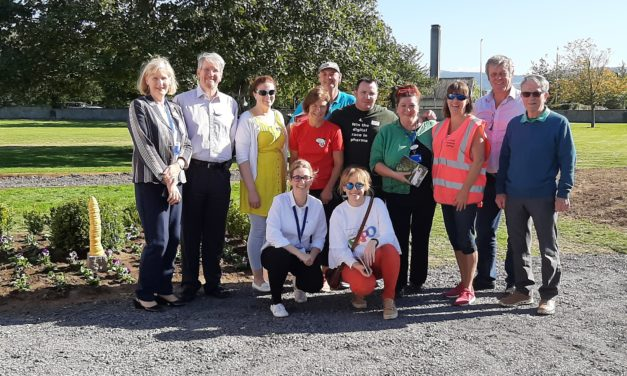 Peamount Healthcare Garden Project