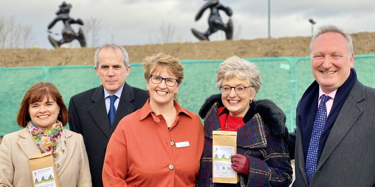 Three Bears Sculpture Unveiled at Tallaght Hospital