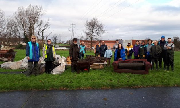 New Year And Another Dodder Clean Up