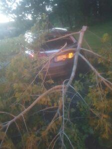 Damaged-car-Trees-Rathfarnham