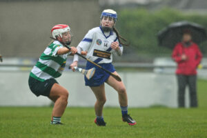 Dublin Camogie Junior Round Towers