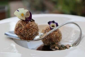 Healthy Protein Balls Newsgroup Recipes