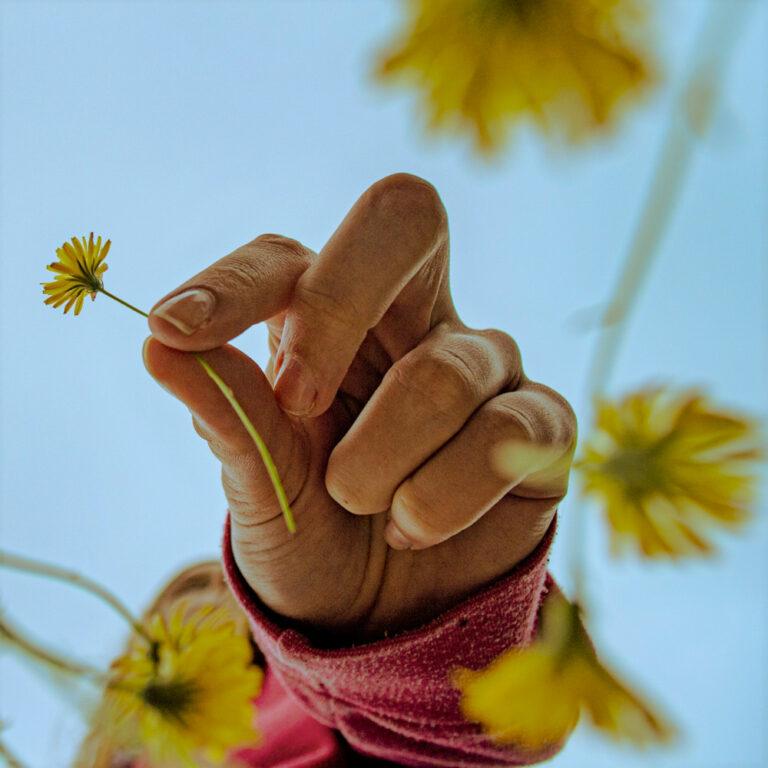 Palmerstown CC Kevin Naughton Picking Flowers