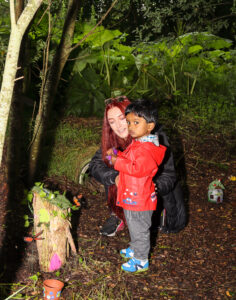 Fairy Village Saggart