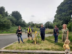 Millrace Residents Saggart Tree Of Hope